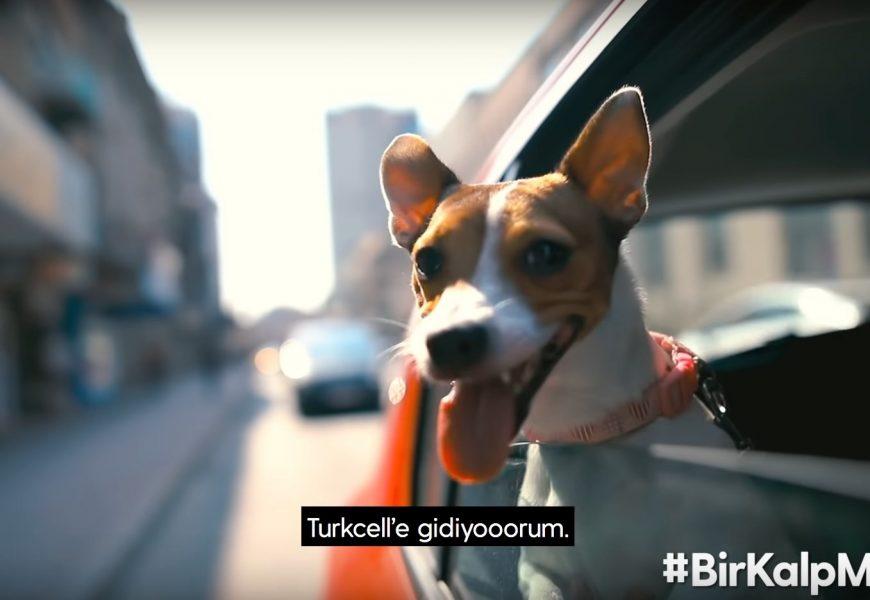 Turkcell Bir Kalp Mama #birkalpmama
